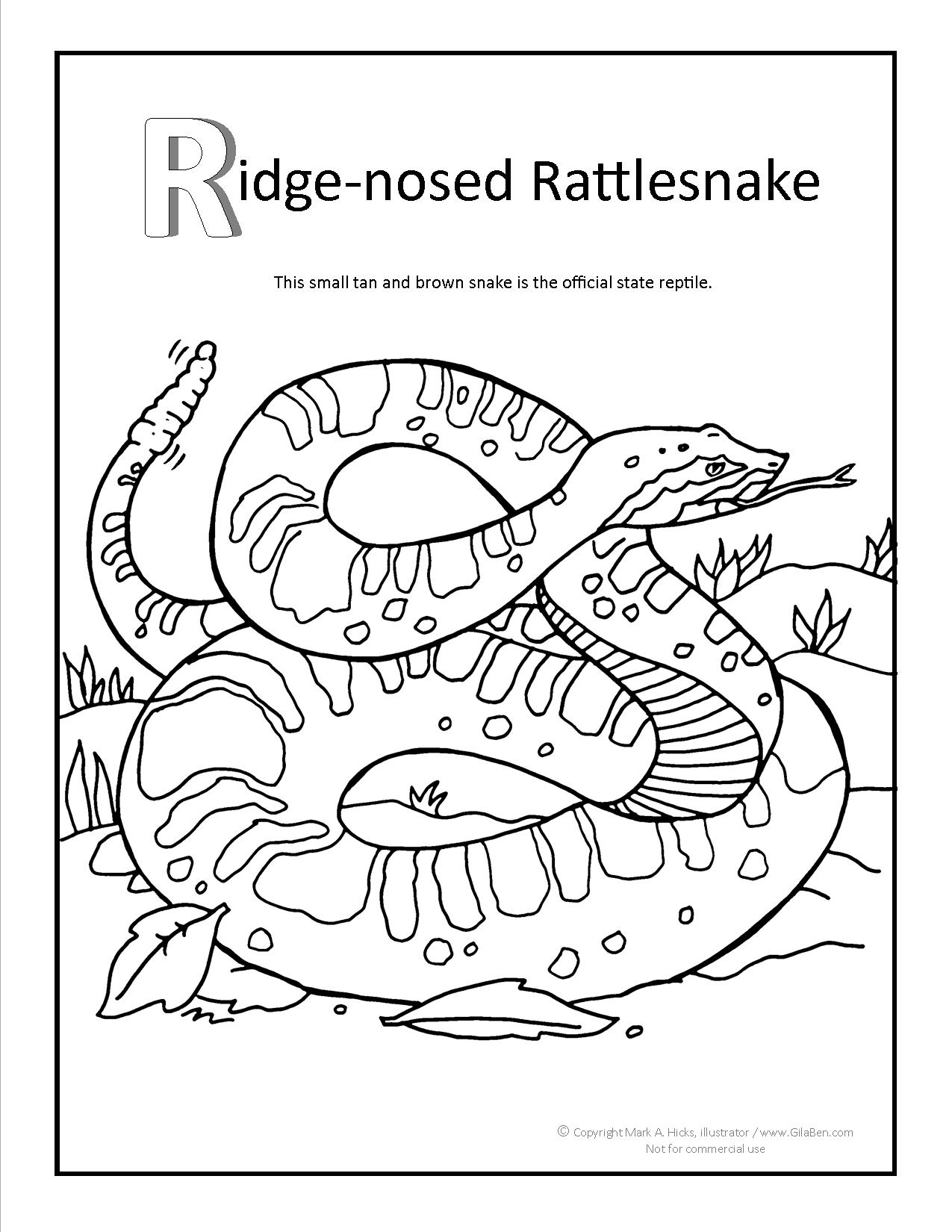 Rattlesnake coloring pages coloring pages for Western diamondback rattlesnake coloring pages